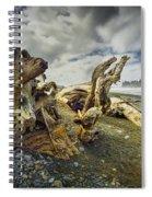 Driftwood On Rialto Beach Spiral Notebook