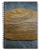 Driftwood On Slate Spiral Notebook