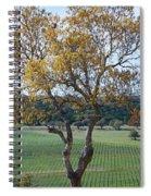 Driftwood Texas Spiral Notebook