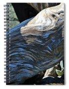 Driftwood Texture And Shadows Spiral Notebook