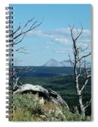 Gnarled Trees And Divide Mountain Spiral Notebook