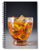 Drink On Ice Spiral Notebook