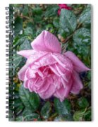 Dripping Pink Spiral Notebook