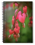 Dripping With Love Spiral Notebook