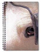 Driving Spiral Notebook