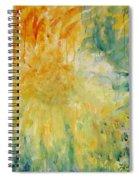 Drizzle Dazzle Spiral Notebook