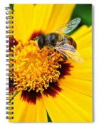 Drone Bee Spiral Notebook