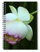 Drooping Lotus Spiral Notebook