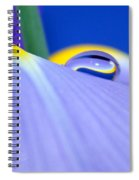 Drop Of Spring Spiral Notebook