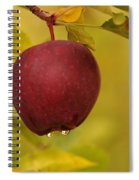 Droplets From A Red Apple   Spiral Notebook
