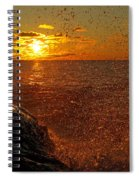 Droplets Of Gold Spiral Notebook