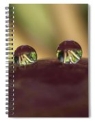 Droplets On An Apple Spiral Notebook