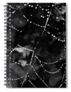Droplets On The Web Bw Spiral Notebook