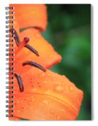 Droplets On Tiger Lily Spiral Notebook