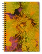 Droplets Two Spiral Notebook
