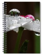 Drops Of Life Spiral Notebook