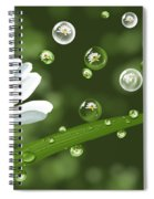 Drops Of Spring Spiral Notebook