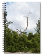 Druid Dance Spiral Notebook