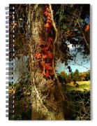 Druid Oak Spiral Notebook