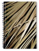 Dry Palm Leaves Spiral Notebook