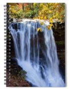 Dry Falls North Carolina Spiral Notebook