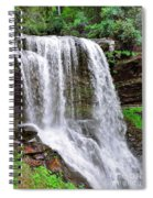 Dry Falls  Spiral Notebook