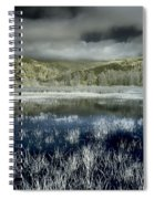 Dry Lagoon Winter Spiral Notebook