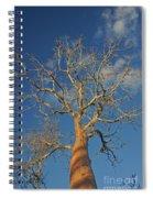 dry season in Madagascar Spiral Notebook