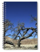 Dry Solitary Tree  Spiral Notebook