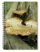 Dryads Saddle Bracket Fungi - Polyporus Squamosus Spiral Notebook