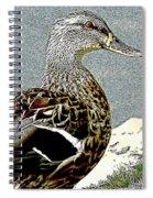 Duck Art Tribal Mallard Spiral Notebook