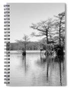 Duck Blind On Caddo Lake Spiral Notebook