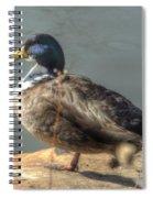 Duck By Pond Spiral Notebook
