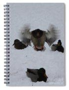 Duck Crash Landing Spiral Notebook