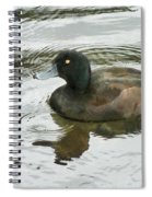 Duck Day Afternoon Spiral Notebook
