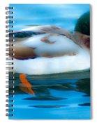 Duck Glide Spiral Notebook