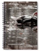 Duck In Lake  Spiral Notebook