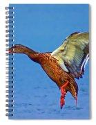 Duck Landing Spiral Notebook