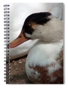 Duck Duck Spiral Notebook