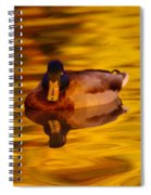 Duck On Golden Water Spiral Notebook