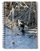 Duck Paddle Spiral Notebook