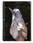Duck Portrait Spiral Notebook