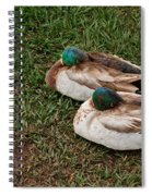 Ducks At Rest Spiral Notebook