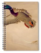 Ducks In Flight Spiral Notebook