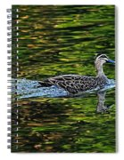 Ducks On Green Reflections - Panorama Spiral Notebook