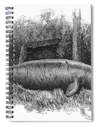 Dugong, Sea-cow Spiral Notebook