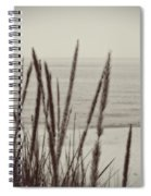 Dune Grass In Early Spring Spiral Notebook