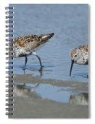 Dunlins Spiral Notebook