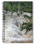 Dunns River Falls 2 Spiral Notebook