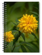 Duo  Spiral Notebook